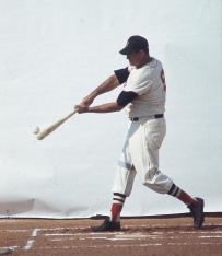 Ted Williams - Contact
